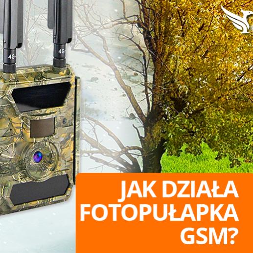Fotopułapki Kamery zewnętrzne Gsm Bezprzewodowe Monitoring bezprzewodowy Gsm 3G 4G LTE Opinie Forum Ranking