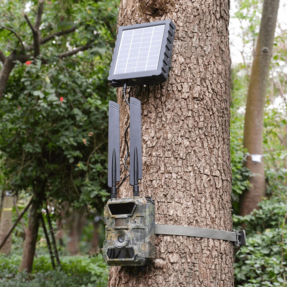kamera GSM z panelem solarnym orllo.pl